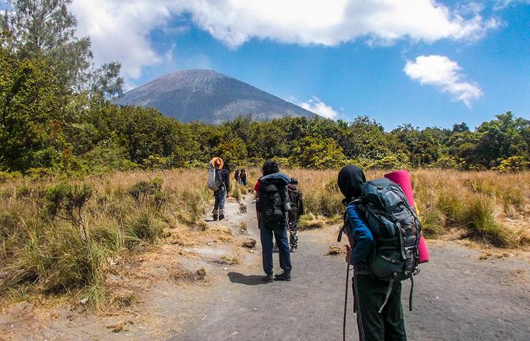 tips mencari guide mendaki gunung